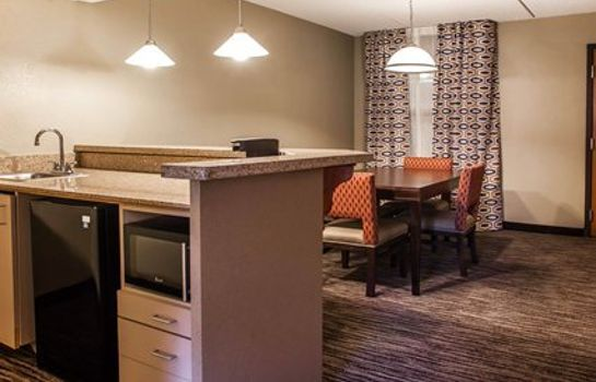 Suite Comfort Inn Arlington Heights - O?Hare