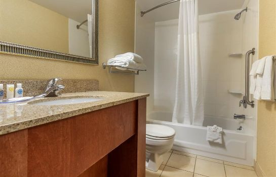 Suite Comfort Inn Arlington Heights Chicago OH Comfort Inn Arlington Heights Chicago OH
