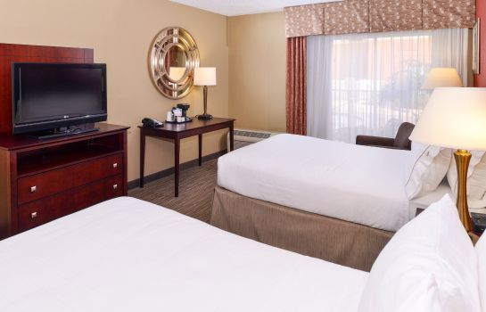Zimmer Holiday Inn Express CLEARWATER EAST - ICOT CENTER