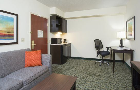 Suite Holiday Inn Express & Suites COLUMBUS AIRPORT