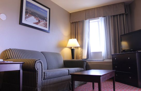 Zimmer Holiday Inn Express COLORADO SPRINGS AIRPORT