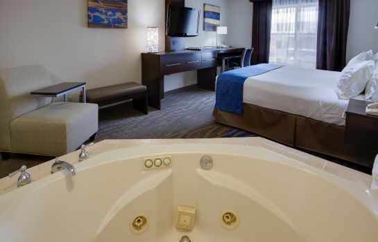 Suite Holiday Inn Express & Suites MEADOWLANDS AREA