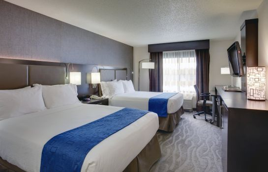 Zimmer Holiday Inn Express & Suites MEADOWLANDS AREA