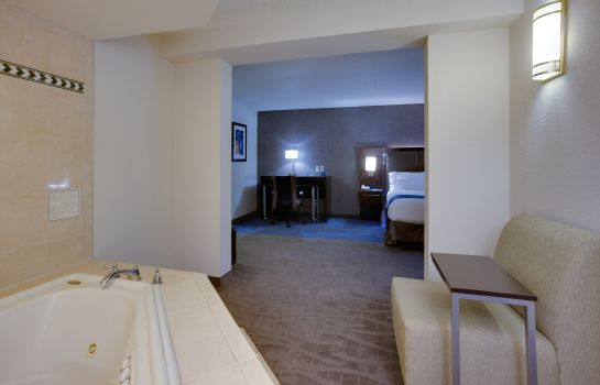 Room Holiday Inn Express & Suites MEADOWLANDS AREA