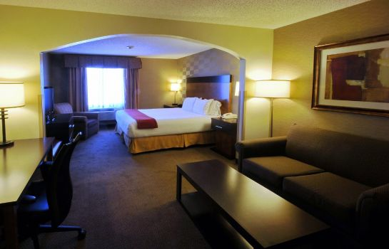 Suite Holiday Inn Express & Suites DENVER SW-LITTLETON