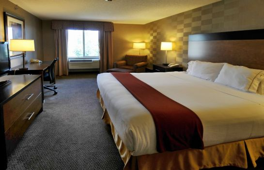 Room Holiday Inn Express & Suites DENVER SW-LITTLETON