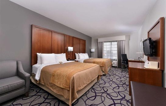 Room Comfort Inn and Suites Frisco - Plano