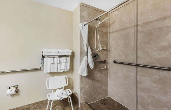 Suite Quality Inn & Suites - Granbury