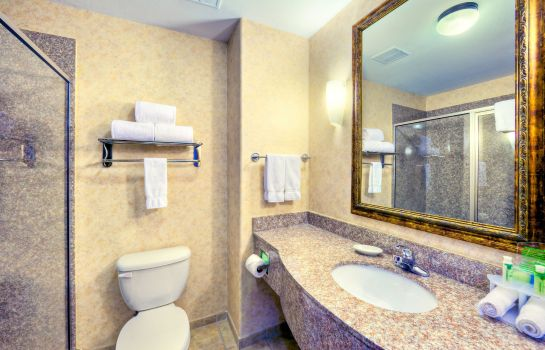 Zimmer Quality Inn and Suites - Granbury