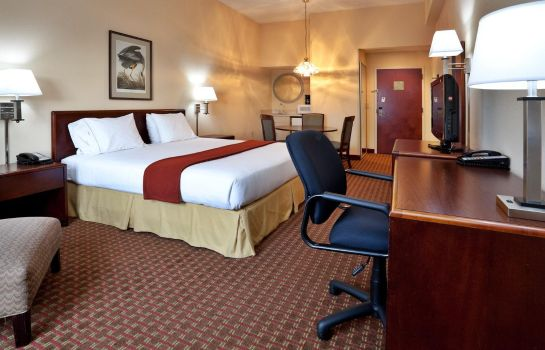 Suite Holiday Inn Express GREENVILLE