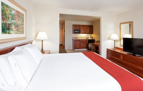 Suite Holiday Inn Express & Suites COLUMBUS SE - GROVEPORT