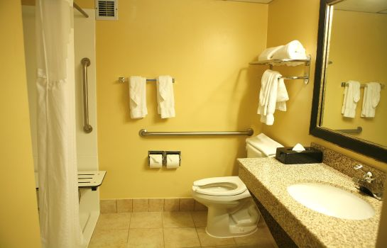 Kamers BEST WESTERN PLUS GOLDSBORO