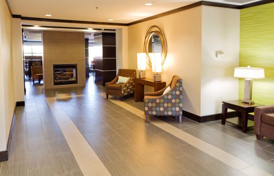Lobby Holiday Inn Express & Suites GREENVILLE-DOWNTOWN