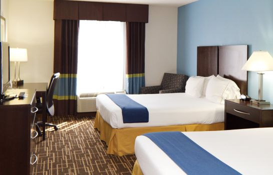 Zimmer Holiday Inn Express & Suites GREENVILLE-DOWNTOWN