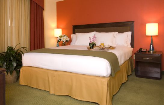 Zimmer Holiday Inn Express & Suites GREENVILLE-I-85 & WOODRUFF RD