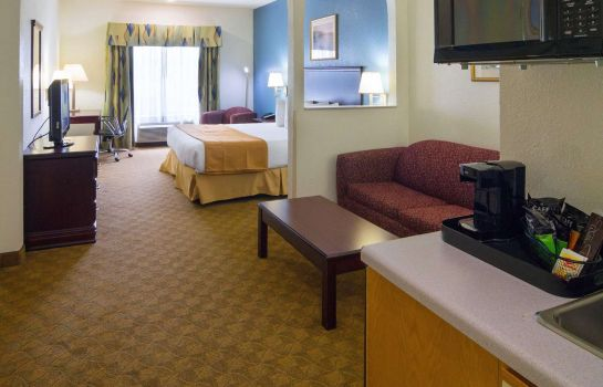 Chambre Quality Inn & Suites Hwy 290 - Brookhollow