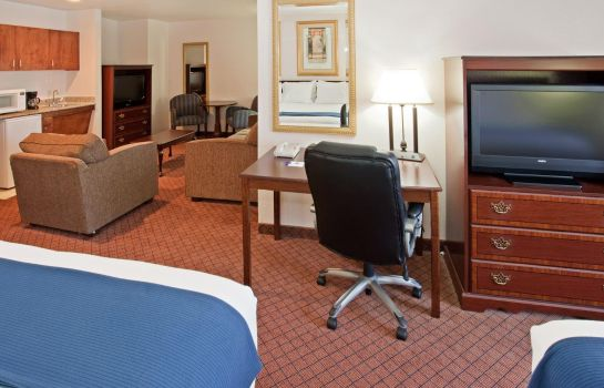 Suite Holiday Inn Express & Suites HOUSTON-DWTN CONV CTR