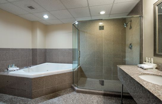 Suite Holiday Inn Express HAUPPAUGE-LONG ISLAND