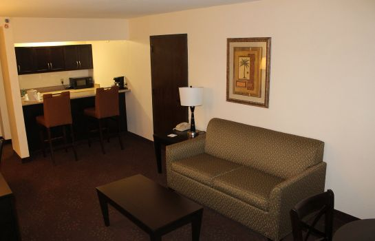 Suite Holiday Inn Express HARLINGEN