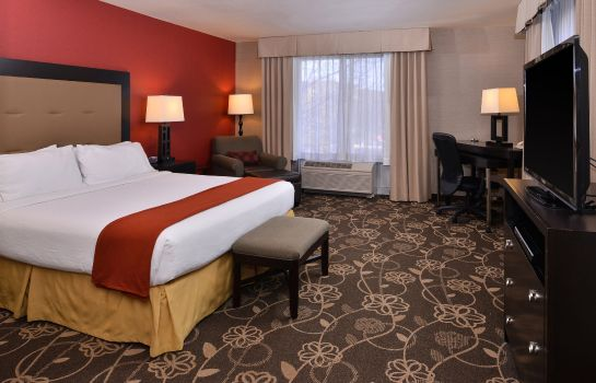 Suite Holiday Inn Express & Suites IDAHO FALLS