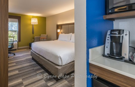 Room Holiday Inn Express & Suites JACKSONVILLE-SOUTH