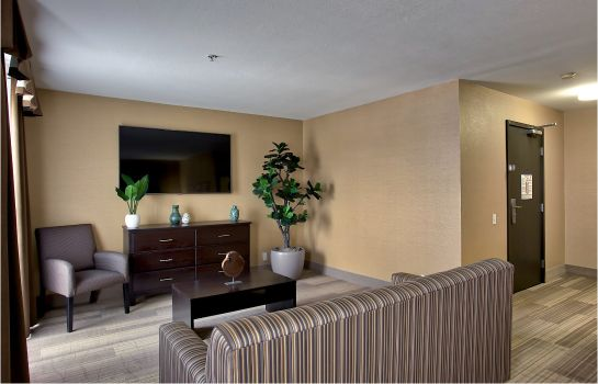 Suite Holiday Inn Express & Suites COSTA MESA