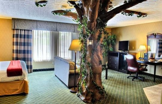 Suite Quality Inn & Suites Medina- Akron West