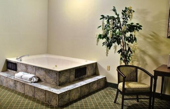 Zimmer Quality Inn and Suites Medina- Akron Wes