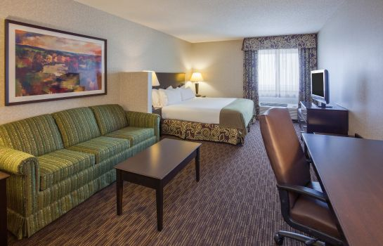 Suite Holiday Inn Express & Suites MINNEAPOLIS-DWTN (CONV CTR)
