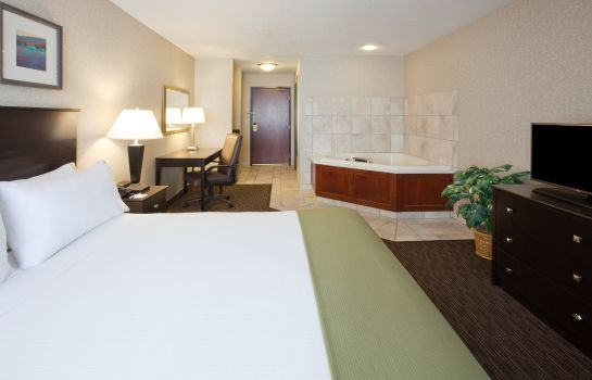 Zimmer Holiday Inn Express & Suites MINNEAPOLIS-DWTN (CONV CTR)