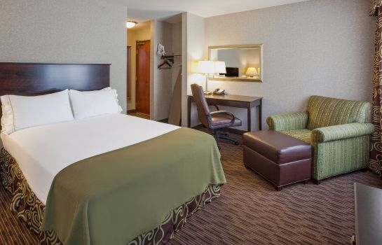 Chambre Holiday Inn Express & Suites MINNEAPOLIS-DWTN (CONV CTR)
