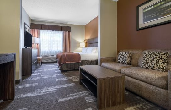 Suite Holiday Inn Express & Suites ST. PAUL - WOODBURY