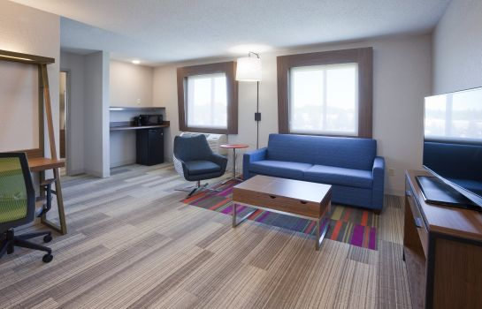 Suite Holiday Inn Express & Suites MINNEAPOLIS (GOLDEN VALLEY)