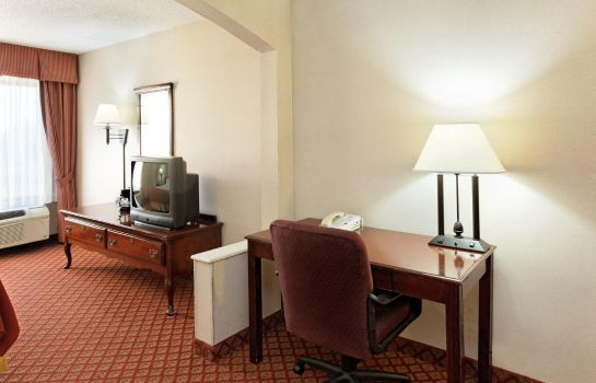 Suite Holiday Inn Express METROPOLIS