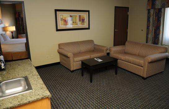 Suite Holiday Inn Express & Suites PHOENIX/CHANDLER (AHWATUKEE)