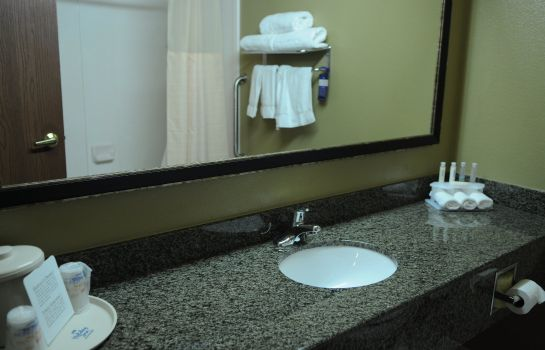 Zimmer Holiday Inn Express & Suites PHOENIX/CHANDLER (AHWATUKEE)