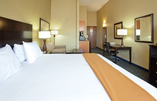 Habitación Holiday Inn Express & Suites PHOENIX/CHANDLER (AHWATUKEE)
