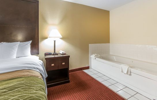Pokój Quality Inn and Suites Portsmouth