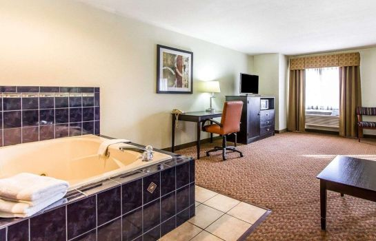 Suite Quality Inn Pontiac