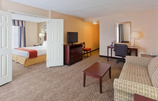 Suite Holiday Inn Express SEAFORD-ROUTE 13