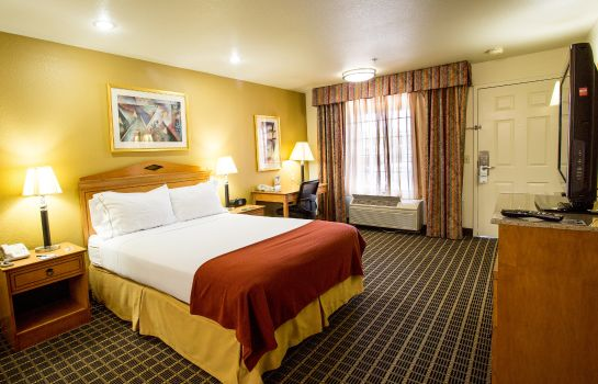 Zimmer Holiday Inn Express SAN JOSE-CENTRAL CITY