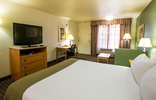 Habitación Holiday Inn Express SAN JOSE-CENTRAL CITY