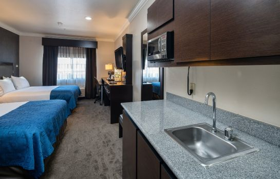 Suite Holiday Inn Express & Suites SANTA CLARA