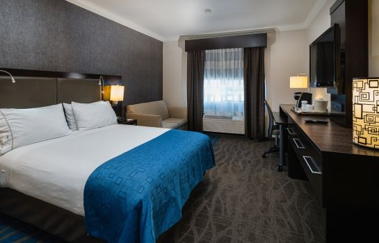Zimmer Holiday Inn Express & Suites SANTA CLARA