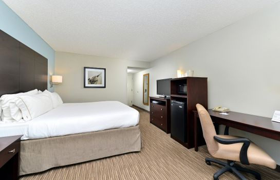 Zimmer Holiday Inn Express & Suites TAMPA/ROCKY POINT ISLAND