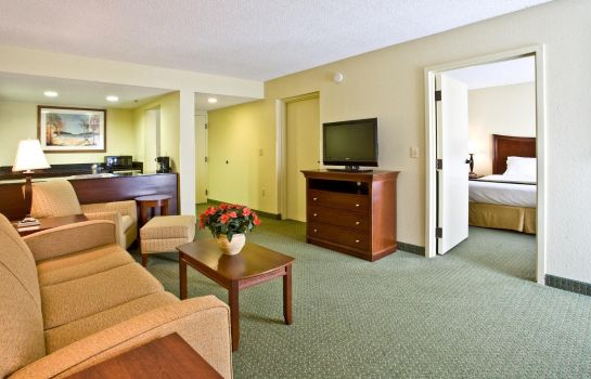 Suite Holiday Inn Express TAMPA-BRANDON
