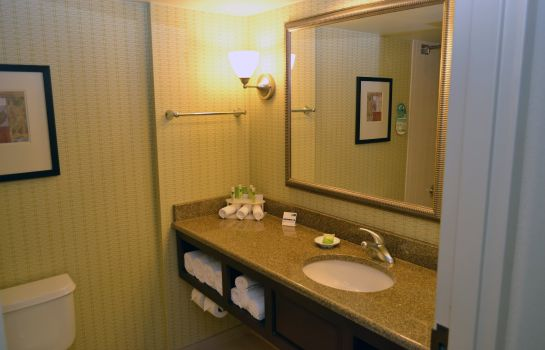 Zimmer Holiday Inn Express TAMPA-BRANDON