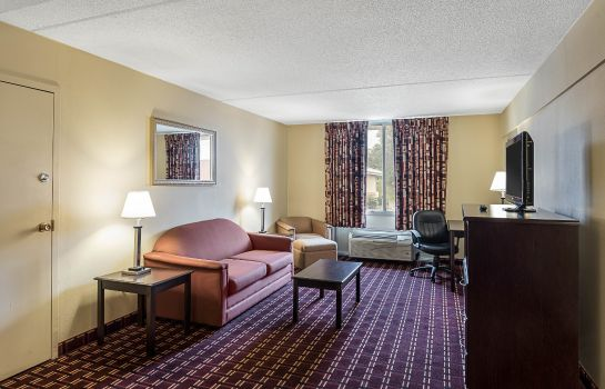 Suite Econo Lodge Inn & Suites Triadelphia - Wheeling