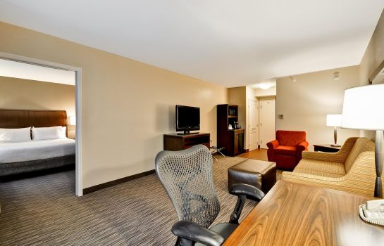 Suite Hilton Garden Inn Tampa North