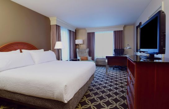 Chambre Hilton Garden Inn Chicago North Shore-Evanston